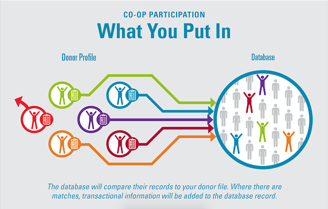 Charity Co Op Participation What You Put In