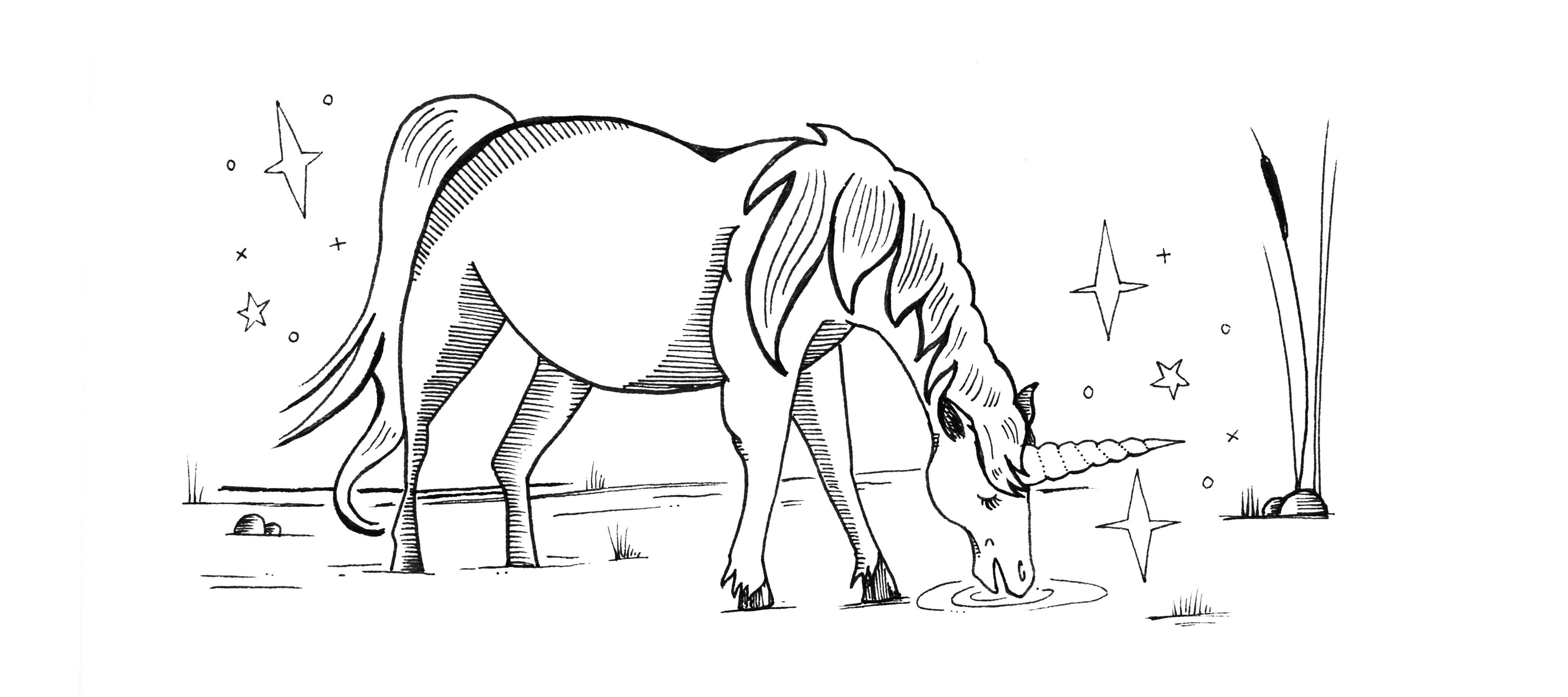 Heroic fundraising blog featured image unicorn Drawing by Senior Designer Amanda Swadlo. All rights reserved.