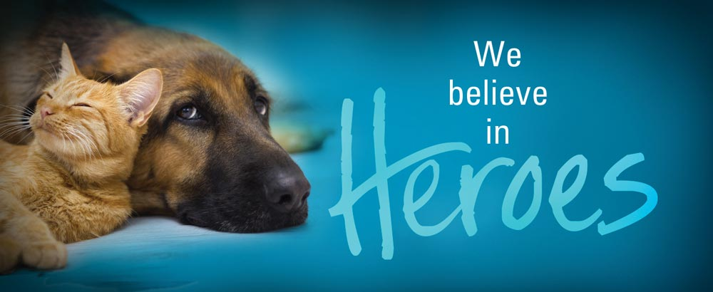 We believe that every pet deserves a loving home.