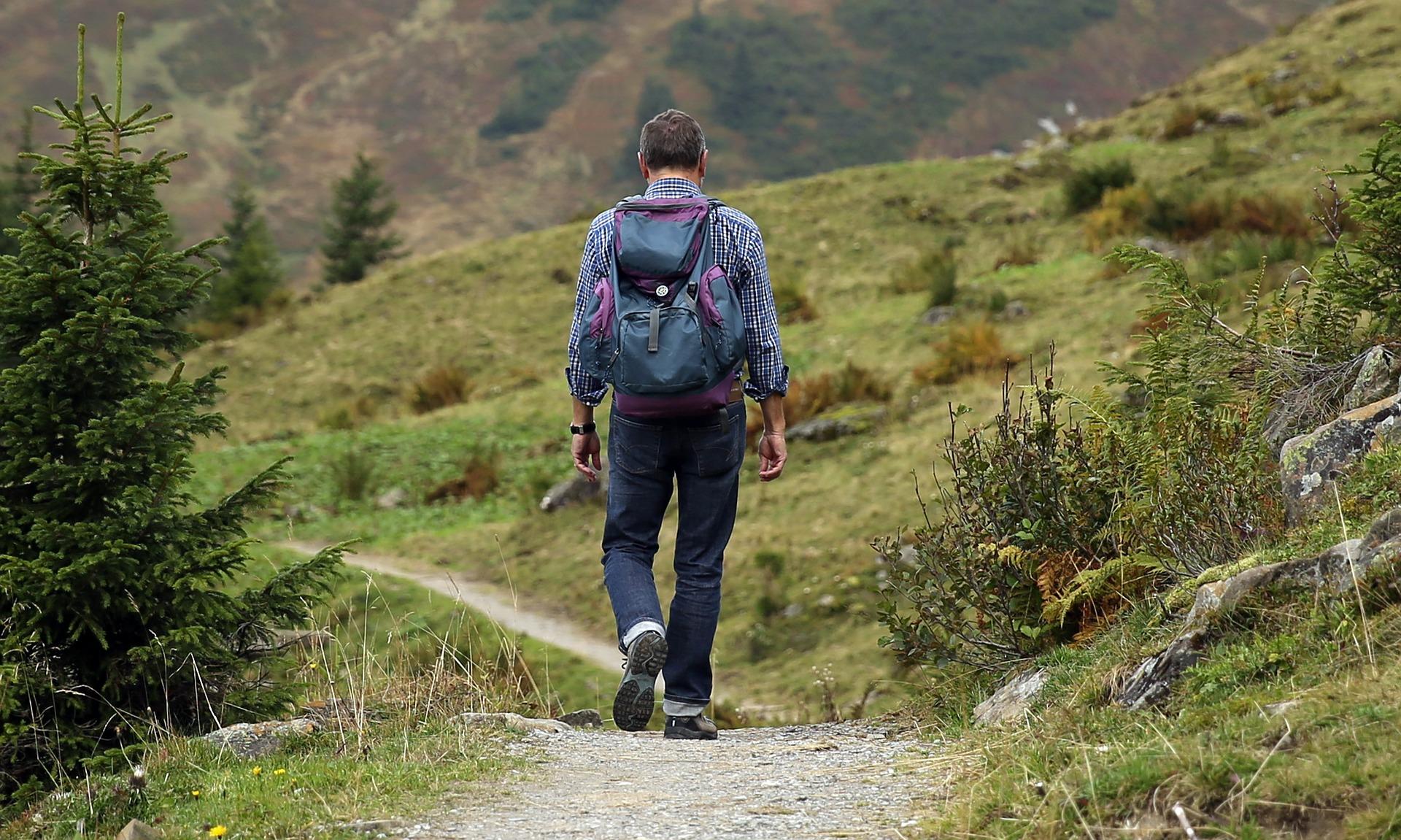 stock image walking path man hike